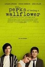 The Perks of Being a Wallflower (version originale)