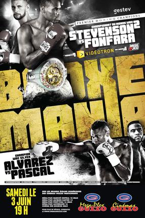 WBC World And Silver Championships - Stevenson Vs. Fonfara