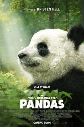 Pandas - The IMAX Experience